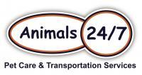 Animals 24/7